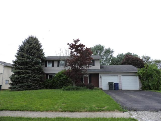 1059 Torrey Hill Drive, Columbus, OH 43228 (MLS #218017409) :: Signature Real Estate