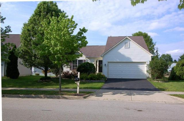 342 Wheatfield Drive, Delaware, OH 43015 (MLS #218017415) :: The Raines Group