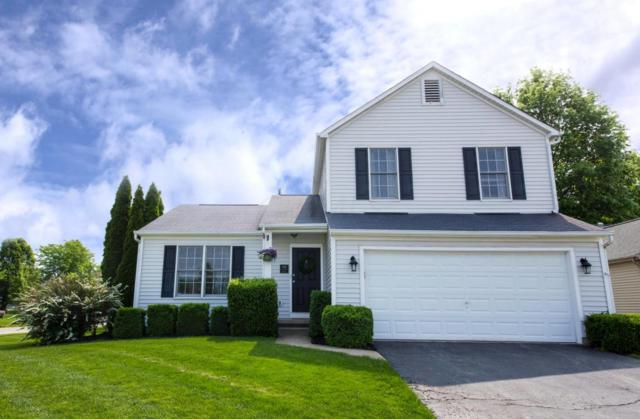 404 Old Ivory Court, Blacklick, OH 43004 (MLS #218017603) :: Exp Realty