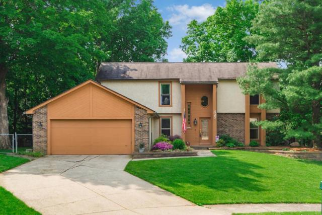 525 Burwood Court, Westerville, OH 43081 (MLS #218017654) :: Signature Real Estate