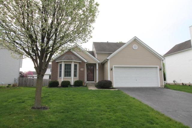 710 Heartland Meadows Drive, Sunbury, OH 43074 (MLS #218017727) :: RE/MAX ONE