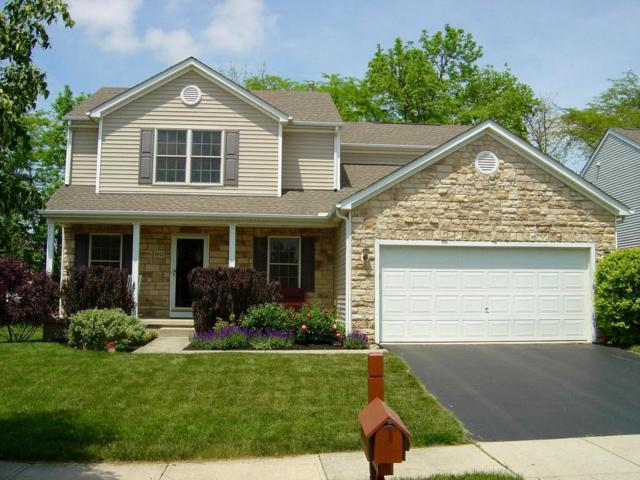 1013 Sapphire Flame Court, Delaware, OH 43015 (MLS #218017743) :: RE/MAX ONE