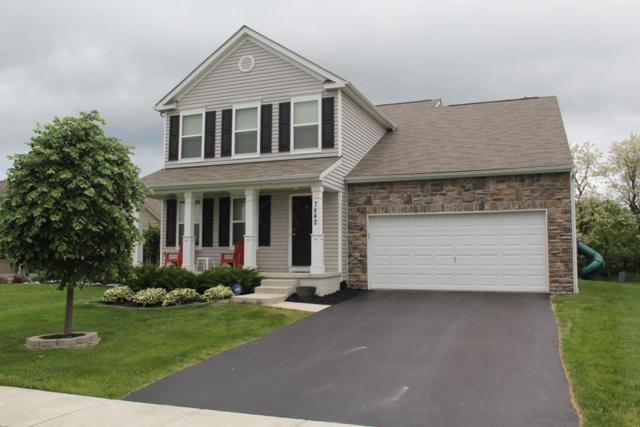 7842 Narrow Leaf Court, Blacklick, OH 43004 (MLS #218017778) :: RE/MAX ONE