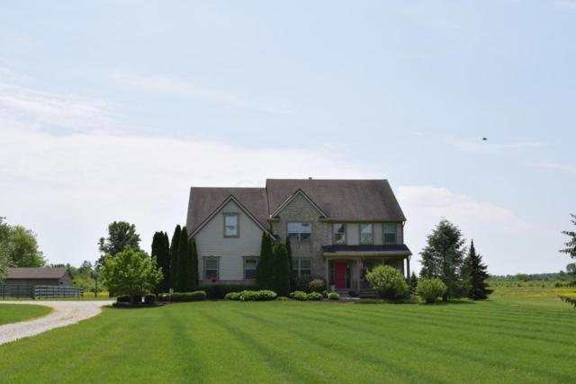 14215 Blamer Road, Johnstown, OH 43031 (MLS #218017806) :: RE/MAX ONE