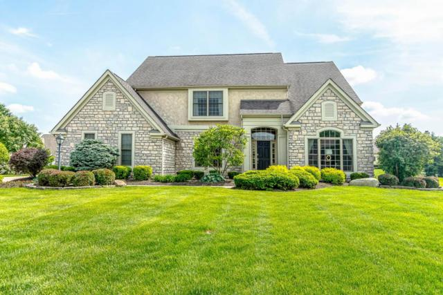 7562 Wild Mint Court, Westerville, OH 43082 (MLS #218017808) :: Exp Realty
