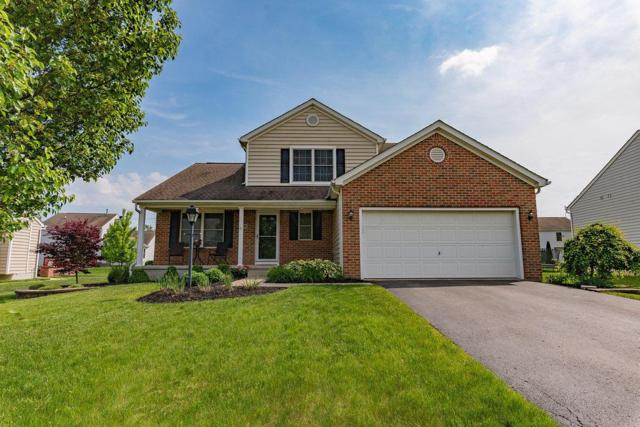 1600 Boxwood Drive, Lewis Center, OH 43035 (MLS #218017860) :: Exp Realty