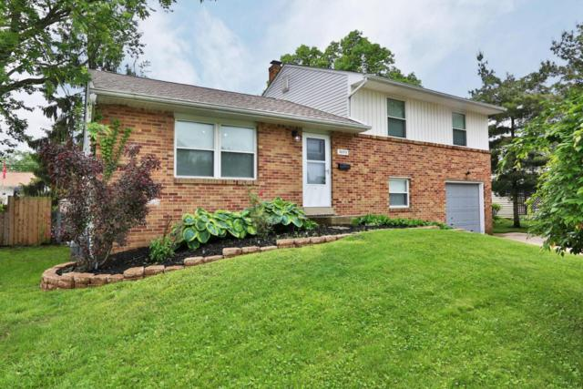 3695 Homecomer Drive, Grove City, OH 43123 (MLS #218017895) :: The Clark Group @ ERA Real Solutions Realty