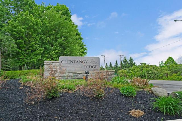 170 Olentangy Ridge Place, Powell, OH 43065 (MLS #218017930) :: Exp Realty