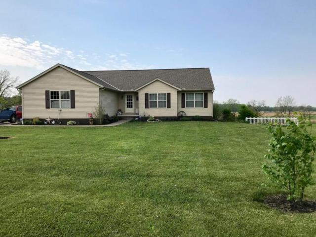 15500 Murphy Road, Sunbury, OH 43074 (MLS #218018058) :: The Clark Group @ ERA Real Solutions Realty