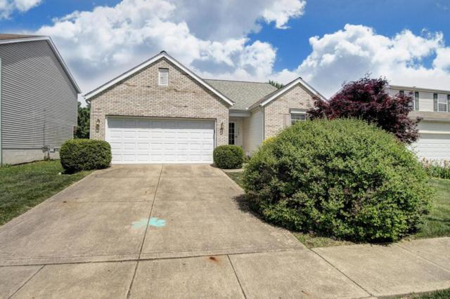 3194 Andy Terrace, Columbus, OH 43223 (MLS #218018224) :: Exp Realty