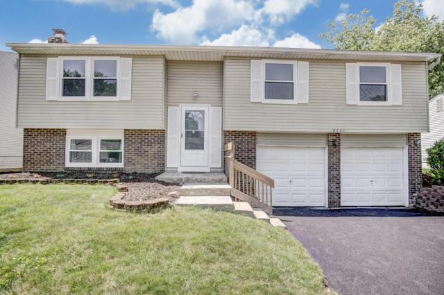 8795 Crestwater Drive, Galloway, OH 43119 (MLS #218018325) :: Exp Realty
