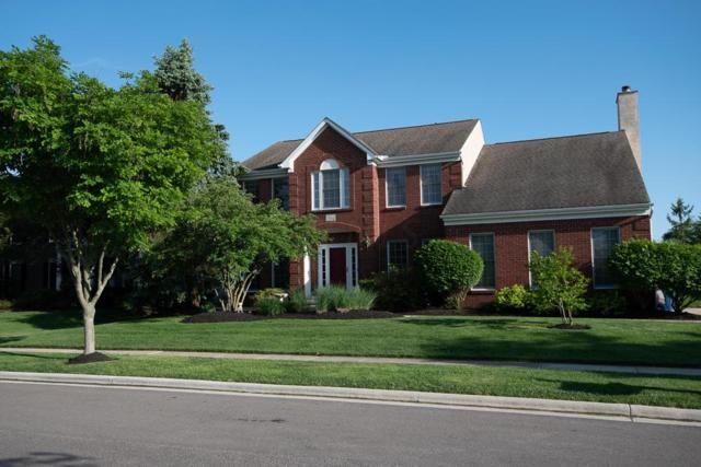 5543 Fawnbrook Court, Dublin, OH 43017 (MLS #218018338) :: The Clark Group @ ERA Real Solutions Realty