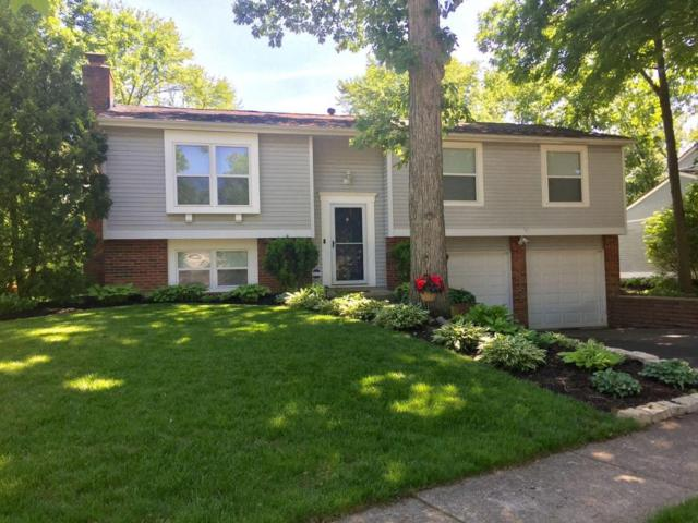 7832 Spirowood Street, Dublin, OH 43016 (MLS #218018372) :: The Clark Group @ ERA Real Solutions Realty