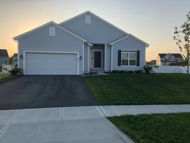 4793 Sea Biscuit Court, Grove City, OH 43123 (MLS #218018378) :: The Clark Group @ ERA Real Solutions Realty
