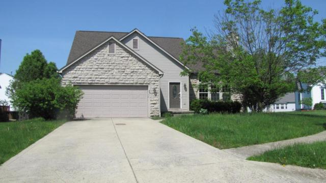 7619 Crist Court, Canal Winchester, OH 43110 (MLS #218018399) :: The Clark Group @ ERA Real Solutions Realty