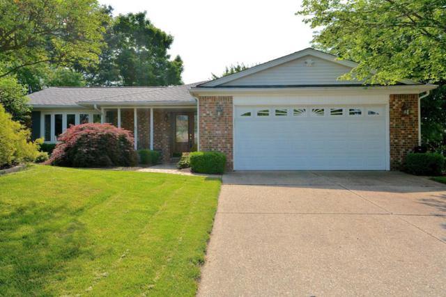 777 Tabon Court, Columbus, OH 43230 (MLS #218018679) :: Exp Realty