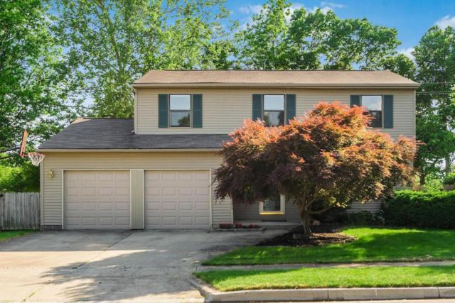 2031 Charmingfare Street, Columbus, OH 43228 (MLS #218019021) :: Signature Real Estate