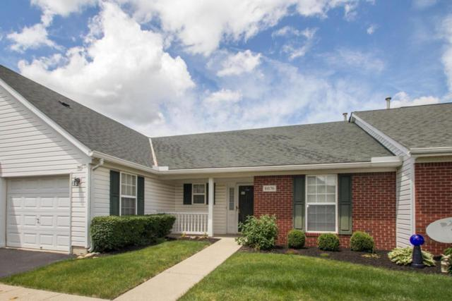8076 Night Heron Lane, Pickerington, OH 43147 (MLS #218019055) :: Susanne Casey & Associates