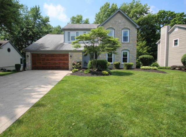 1157 Riva Ridge Boulevard, Columbus, OH 43230 (MLS #218019073) :: Exp Realty