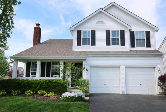 5954 Big Cypress Drive, New Albany, OH 43054 (MLS #218019107) :: Exp Realty