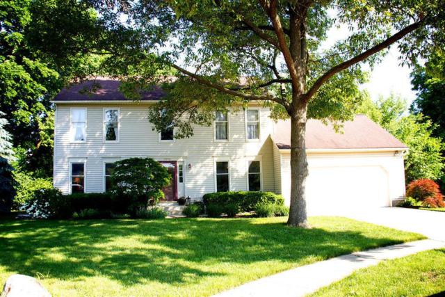 3909 Driscoll Court, Dublin, OH 43016 (MLS #218019158) :: Exp Realty