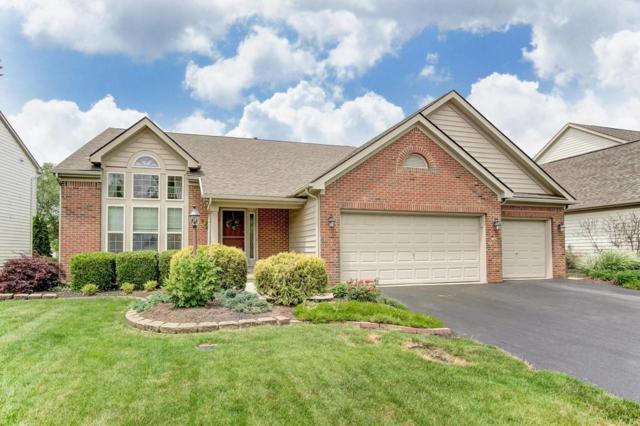 7792 Tree Lake Boulevard, Powell, OH 43065 (MLS #218019215) :: Signature Real Estate