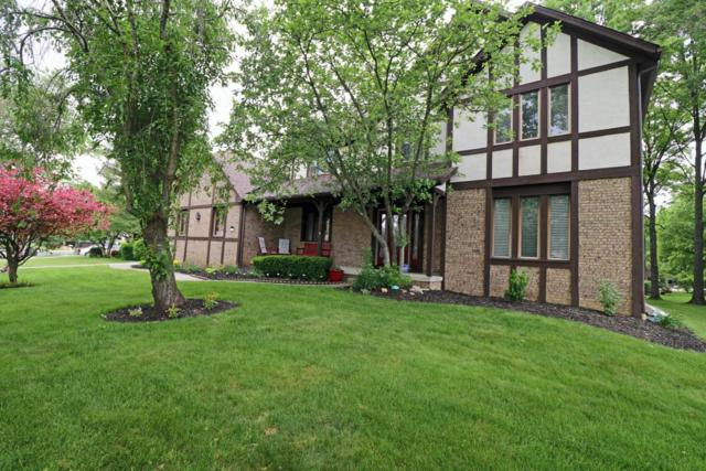 1184 Laurel Drive, Westerville, OH 43081 (MLS #218019272) :: RE/MAX ONE