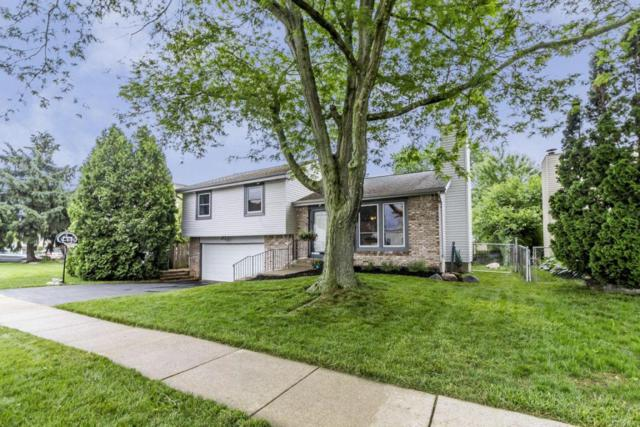 2054 Rolling Meadows Drive, Columbus, OH 43228 (MLS #218019392) :: Exp Realty