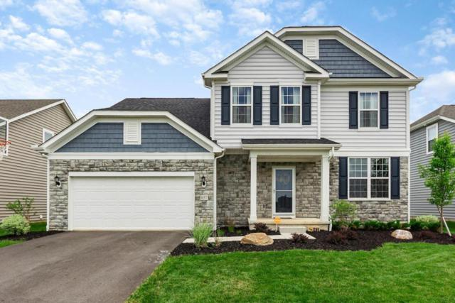 657 Eagle Walk Road, Delaware, OH 43015 (MLS #218020186) :: RE/MAX ONE