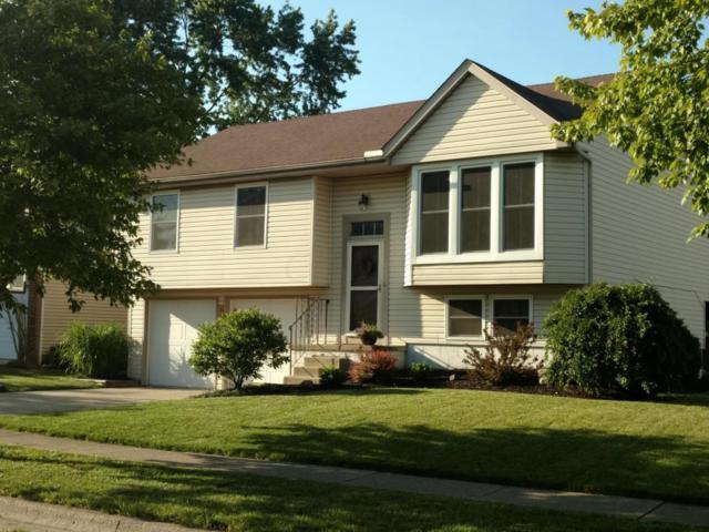3718 Kilkenny Drive, Columbus, OH 43221 (MLS #218020271) :: Exp Realty