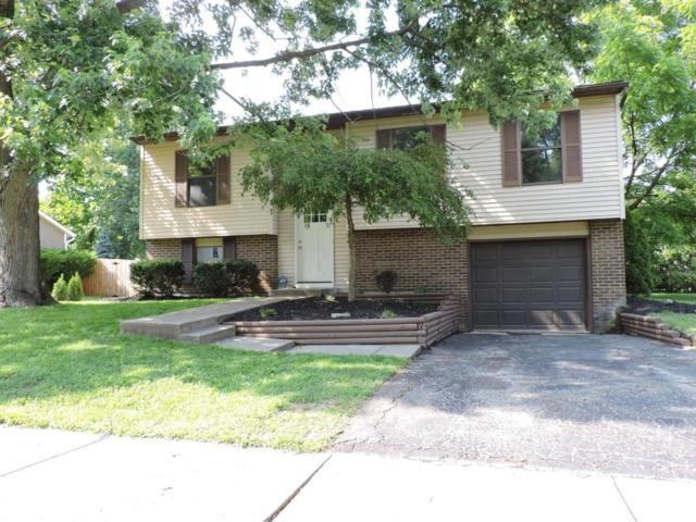 3990 Bluebird Court, Westerville, OH 43081 (MLS #218020423) :: RE/MAX ONE