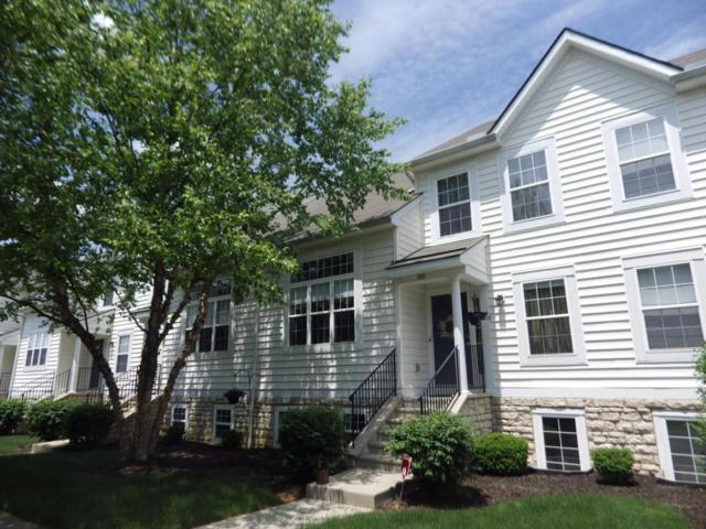 7097 Fonso Drive, New Albany, OH 43054 (MLS #218020462) :: RE/MAX ONE