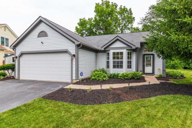 7708 Hominy Hill Court, Pickerington, OH 43147 (MLS #218020495) :: Berkshire Hathaway HomeServices Crager Tobin Real Estate