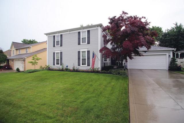 1517 Buckpoint Lane, Worthington, OH 43085 (MLS #218020607) :: The Columbus Home Team
