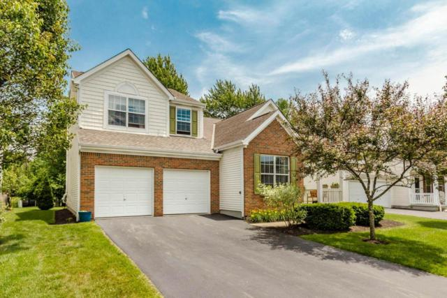 6228 Upper Albany Court, New Albany, OH 43054 (MLS #218020634) :: RE/MAX ONE