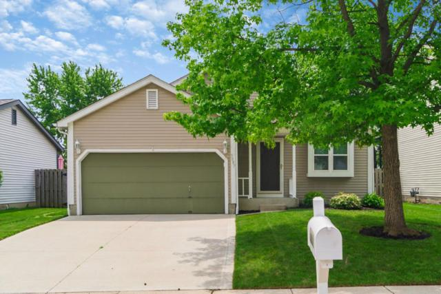 3887 Maidens Larne Drive, Columbus, OH 43221 (MLS #218020654) :: Exp Realty