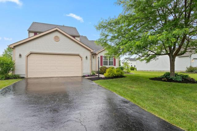 6752 Highbridge Place, Westerville, OH 43082 (MLS #218020929) :: Exp Realty