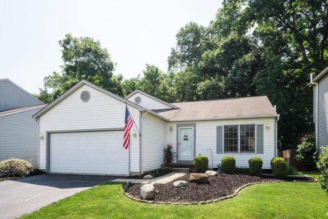 8723 Olenbrook Drive, Lewis Center, OH 43035 (MLS #218021102) :: Signature Real Estate