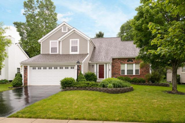 3774 Stonesthrow Lane, Hilliard, OH 43026 (MLS #218021149) :: Exp Realty