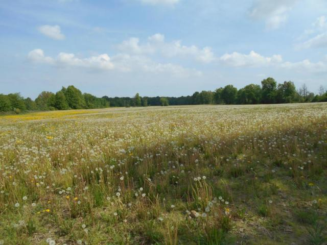 0 Kilbourne Road Tract 4, Sunbury, OH 43074 (MLS #218021210) :: Exp Realty