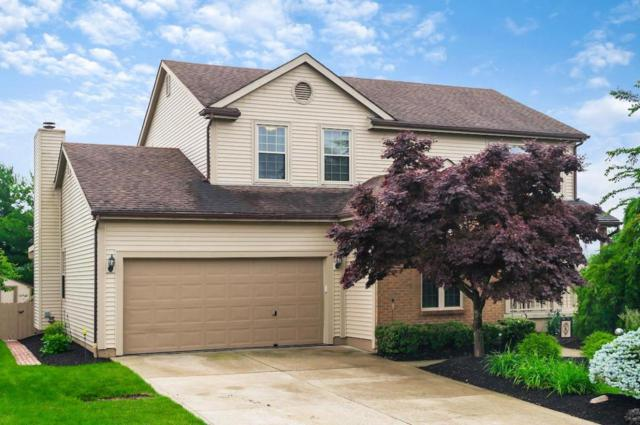 917 Schillingwood Drive, Columbus, OH 43230 (MLS #218021528) :: Exp Realty