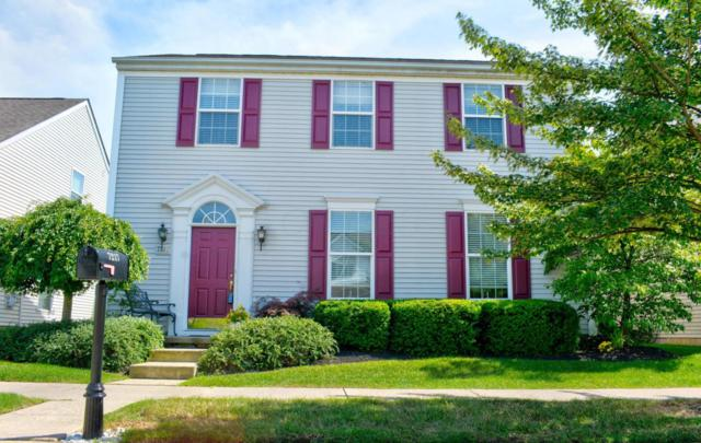 7217 Normanton Drive, New Albany, OH 43054 (MLS #218021567) :: RE/MAX ONE
