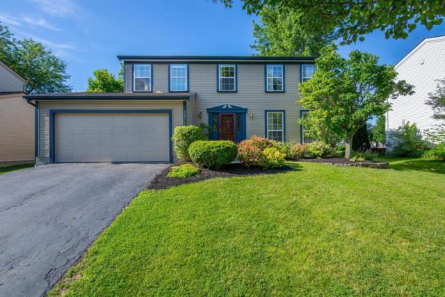 5879 Cape Coral Lane, Hilliard, OH 43026 (MLS #218021738) :: The Columbus Home Team
