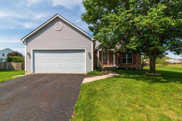 3162 Drake Avenue, Groveport, OH 43125 (MLS #218021757) :: Signature Real Estate