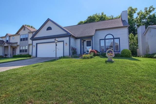 6016 Abbey Church Road, Dublin, OH 43017 (MLS #218021765) :: Exp Realty
