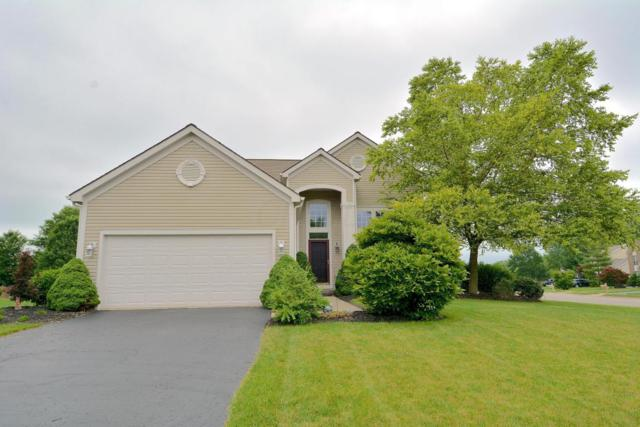 1032 Evadell Drive, Lewis Center, OH 43035 (MLS #218021946) :: Exp Realty