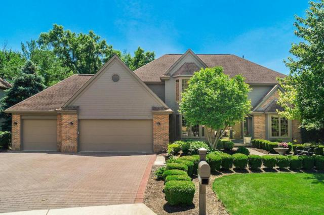 6197 Abbotsford Drive, Dublin, OH 43017 (MLS #218021973) :: Signature Real Estate