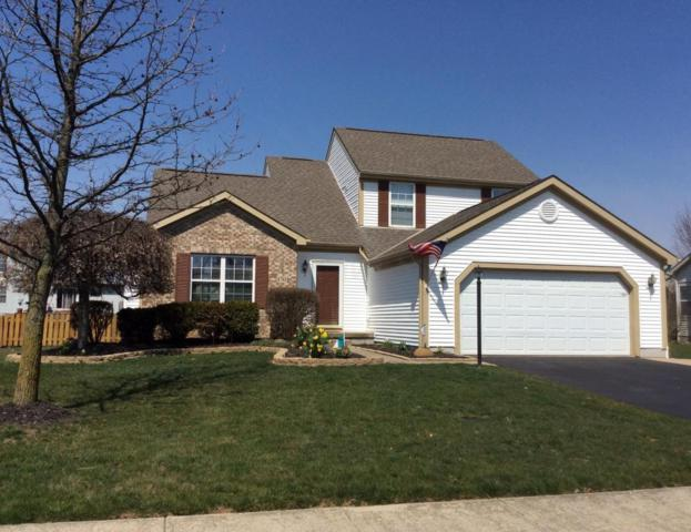 6761 Pine Hollow Drive, Westerville, OH 43082 (MLS #218022080) :: RE/MAX ONE