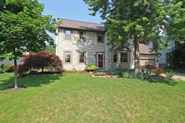 183 Sassafras Way, Westerville, OH 43081 (MLS #218022288) :: Berkshire Hathaway HomeServices Crager Tobin Real Estate