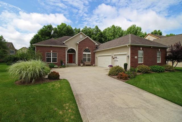7464 Overland Trail, Delaware, OH 43015 (MLS #218022436) :: Berkshire Hathaway HomeServices Crager Tobin Real Estate